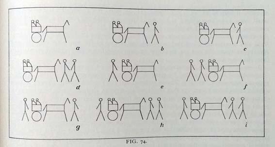 Scene typology