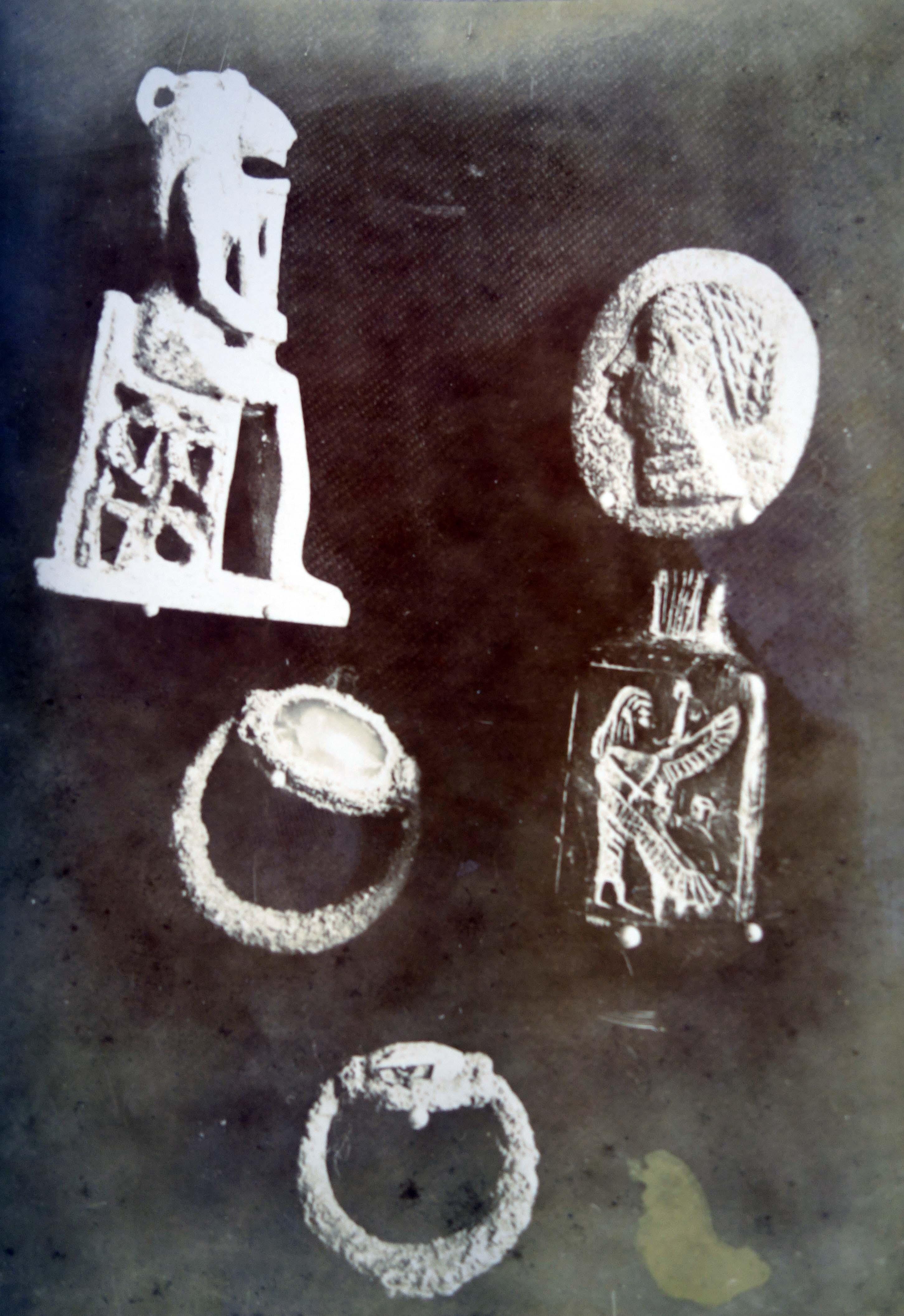 Pierides image 3